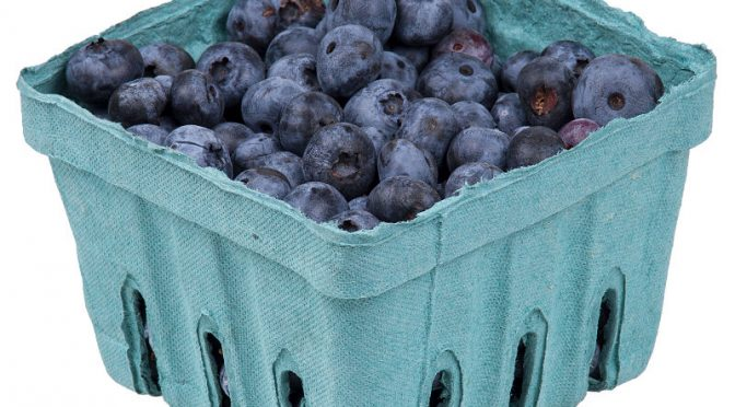 Why Blueberries Are Great