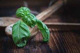 Veggie-lifestyle