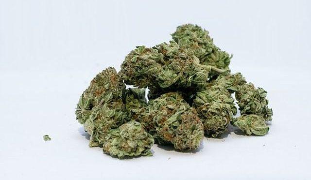 Marijuana and its Side Effects